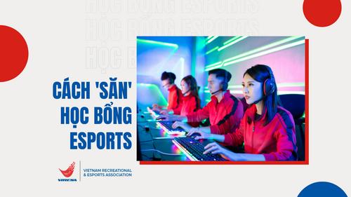 san-hoc-bong-esports-thumbnail-viresa.png